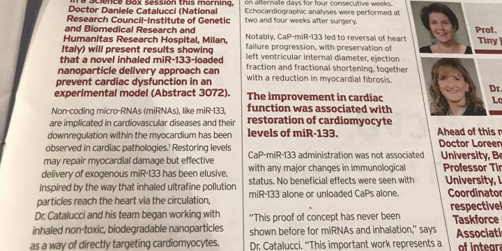 A lightspot for CUPIDO at the European Society of Cardiology Congress 2019